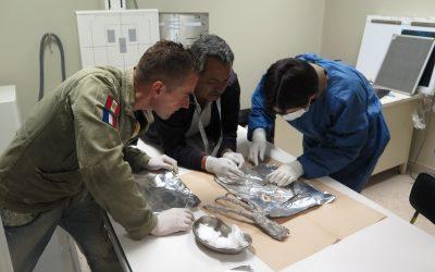 Les échantillons biologiques sont arrivés dans les 3 labos