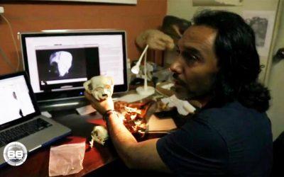 La cabeza del Reptil humanoide no es cabeza modificada de ninguna especie de mamífero cuadrúpedo conocido, replica al Ph.D. Rodolfo Salas-Gismondi, (2018)