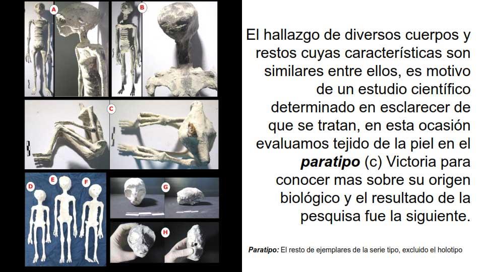 Cuerpos descubiertos en Nazca - Perú