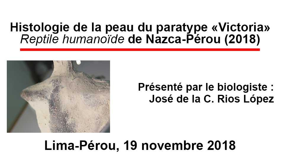 """Histologie de la peau du """"paratype"""" Victoria"""